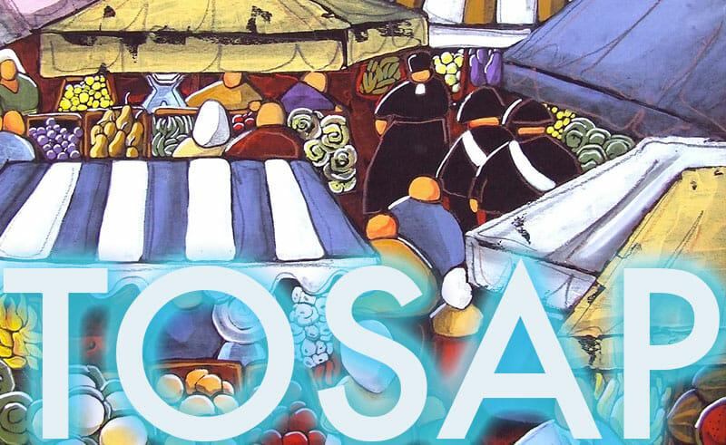 LA TOSAP E IL DLGS 507/1993